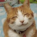 gindot's avatar