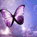 No1_Vegan_Goddess's avatar