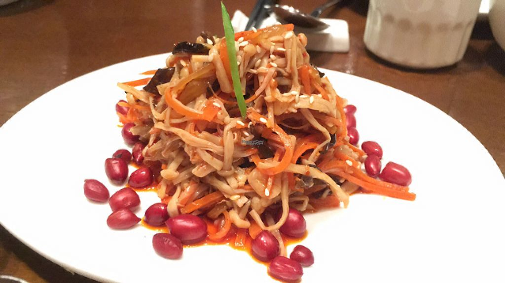 """Photo of Vegetarian Life Style - Zao Zi Shu - HuaiHai  by <a href=""""/members/profile/SuBravo"""">SuBravo</a> <br/>mixed assorted vegetables <br/> April 30, 2017  - <a href='/contact/abuse/image/14/254118'>Report</a>"""