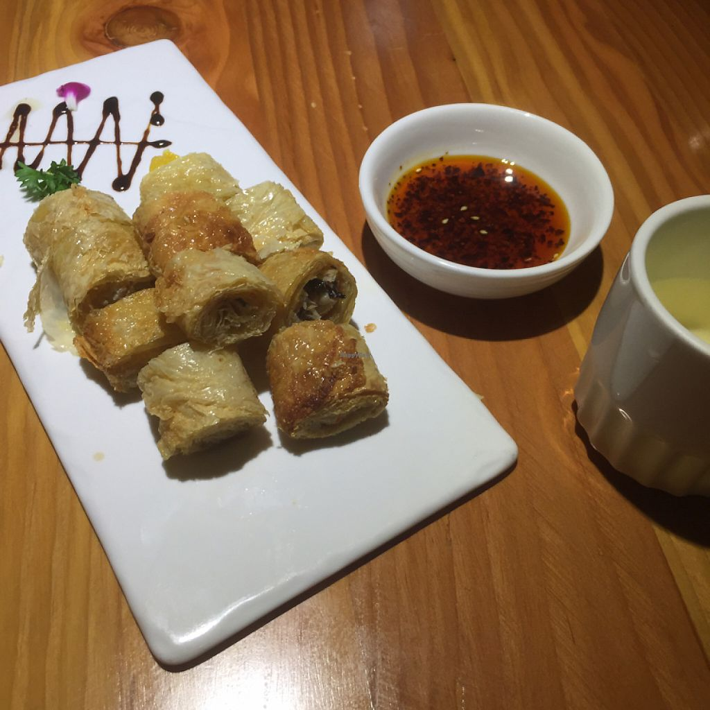 """Photo of Vegetarian Life Style - Zao Zi Shu - HuaiHai  by <a href=""""/members/profile/vegannomad2"""">vegannomad2</a> <br/>tofu skins with mushrooms a bit oily <br/> May 14, 2017  - <a href='/contact/abuse/image/14/258637'>Report</a>"""