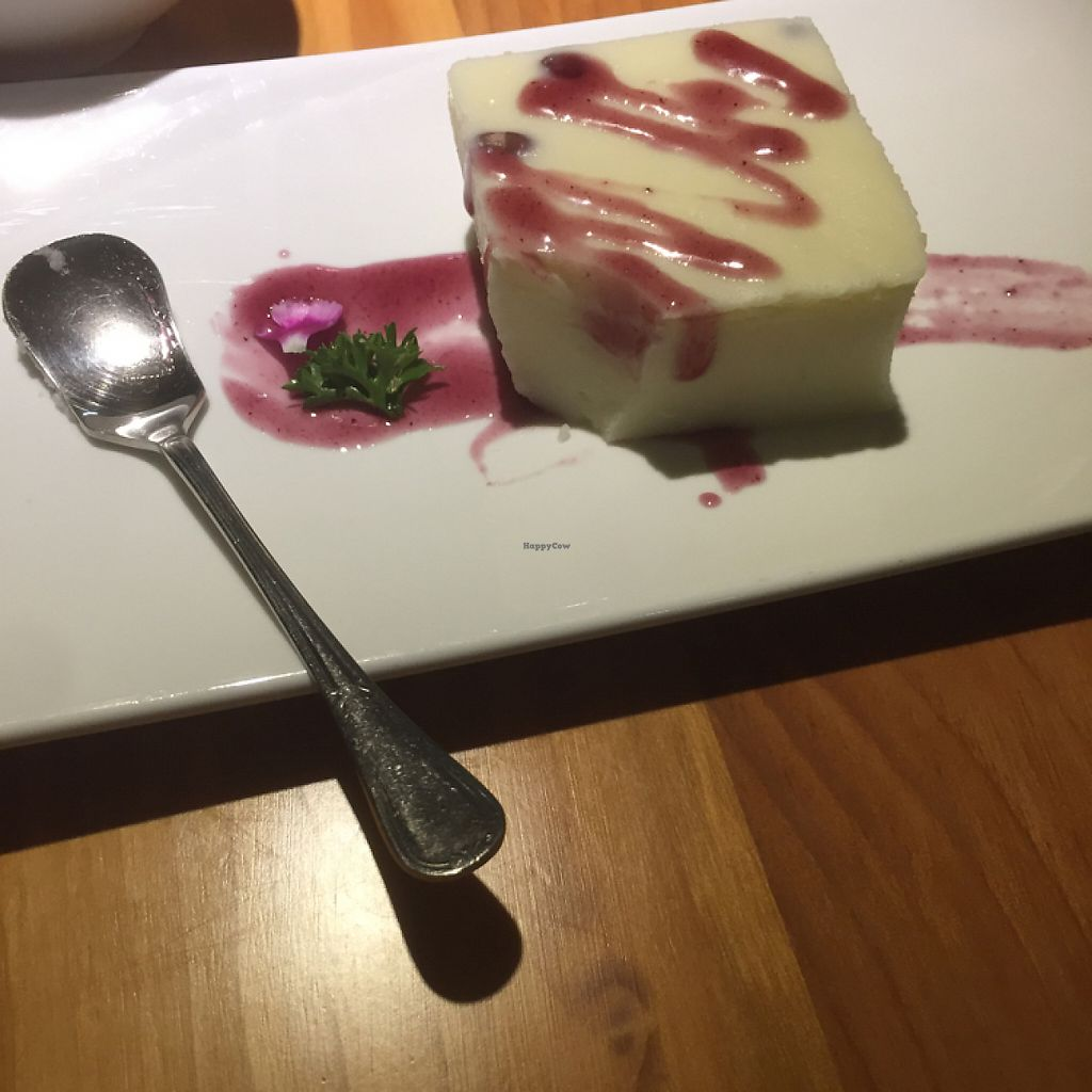 """Photo of Vegetarian Life Style - Zao Zi Shu - HuaiHai  by <a href=""""/members/profile/vegannomad2"""">vegannomad2</a> <br/>blueberry cheese cake. nice <br/> May 14, 2017  - <a href='/contact/abuse/image/14/258640'>Report</a>"""