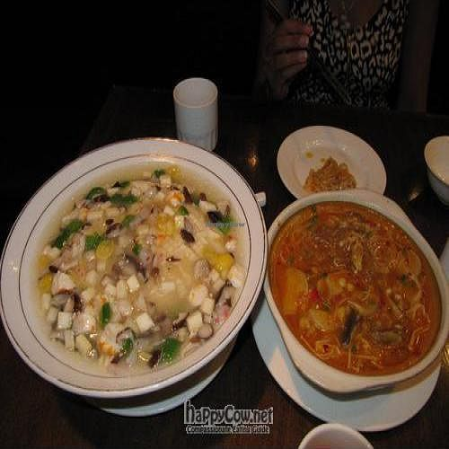 """Photo of Vegetarian Life Style - Zao Zi Shu - HuaiHai  by <a href=""""/members/profile/Ashni"""">Ashni</a> <br/>Amazing Malaysian claypot with mung bean noodles and tofu/vegetables on a steamed lotus-root leaf  <br/> August 11, 2010  - <a href='/contact/abuse/image/14/5514'>Report</a>"""