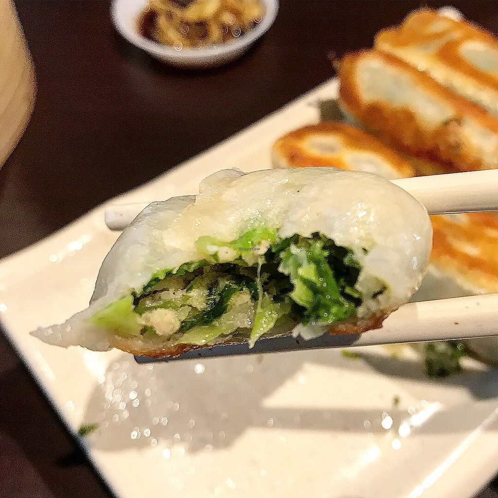 """Photo of Divine Realm Vegetarian Restaurant  by <a href=""""/members/profile/Sweetveganneko"""">Sweetveganneko</a> <br/>Potstickers <br/> March 5, 2018  - <a href='/contact/abuse/image/185/367129'>Report</a>"""