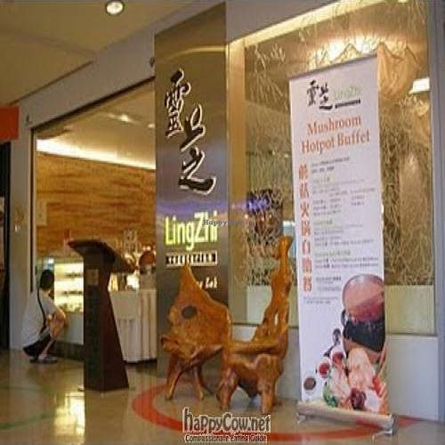 "Photo of Ling Zhi Vegetarian Restaurant - Novena Square  by <a href=""/members/profile/Peace%20..."">Peace ...</a> <br/>Lingzhi Vegetarian Restaurant @ Novena Square Spore <br/> February 26, 2010  - <a href='/contact/abuse/image/211/3790'>Report</a>"