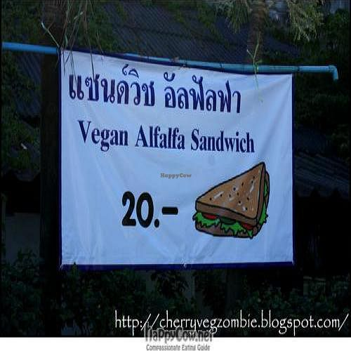 """Photo of Aden Market  by <a href=""""/members/profile/CherryFlamingo"""">CherryFlamingo</a> <br/>Vegan Alfalfa Sandwich <br/> February 19, 2011  - <a href='/contact/abuse/image/371/7467'>Report</a>"""