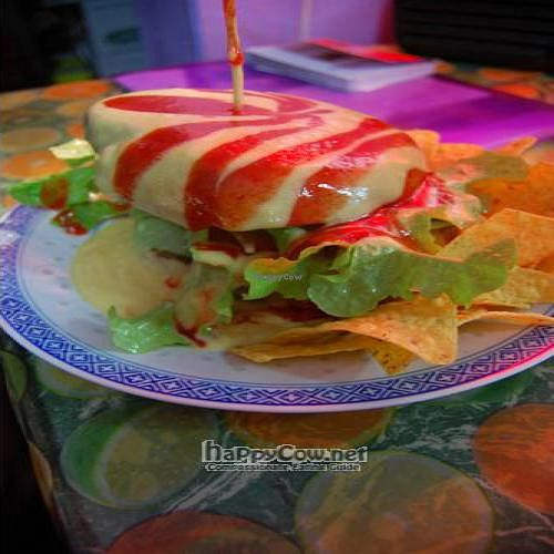 """Photo of Vego and Love'n it  by <a href=""""/members/profile/jadeybug"""">jadeybug</a> <br/>Mexican vegie burger <br/> June 22, 2011  - <a href='/contact/abuse/image/460/9351'>Report</a>"""