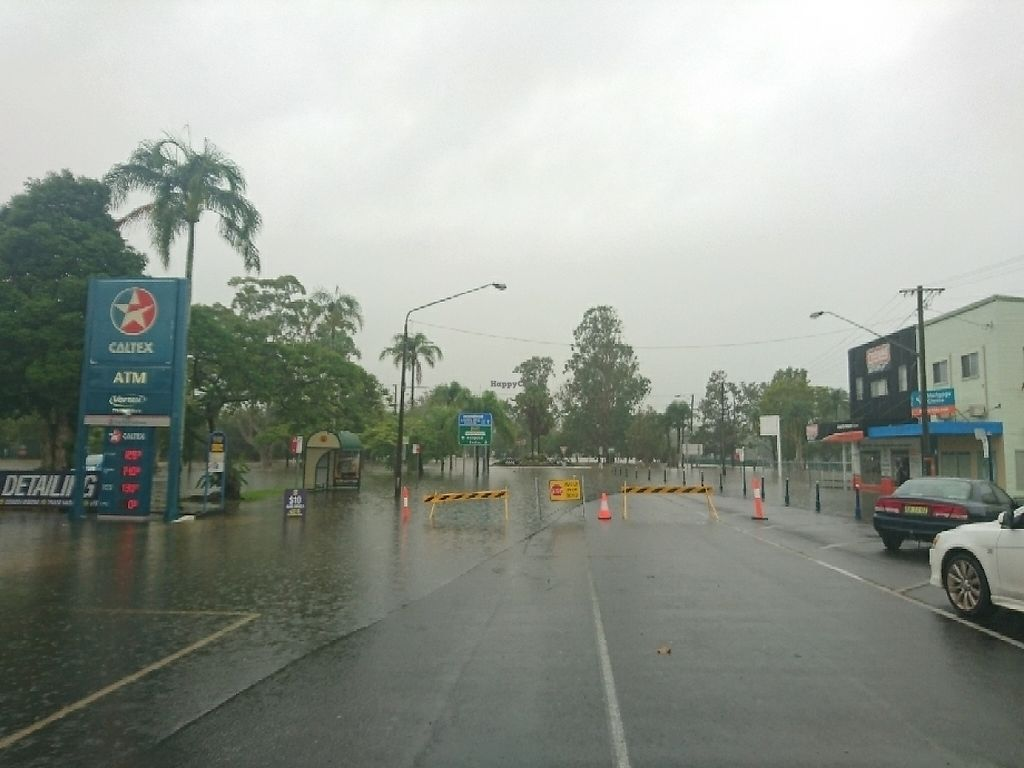 """Photo of 20000 Cows Vegetarian House  by <a href=""""/members/profile/MarcusAbbott"""">MarcusAbbott</a> <br/>Lismore is flooding constantly bring out the cannoos  <br/> May 29, 2017  - <a href='/contact/abuse/image/470/263705'>Report</a>"""