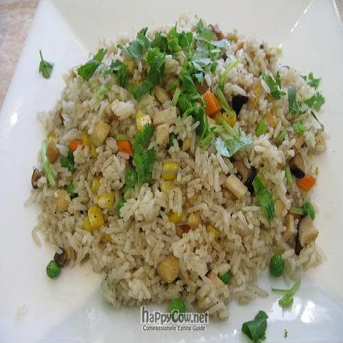 """Photo of An Lac Vegan  by <a href=""""/members/profile/cvxmelody"""">cvxmelody</a> <br/>Veggie fried rice <br/> December 24, 2009  - <a href='/contact/abuse/image/473/3218'>Report</a>"""