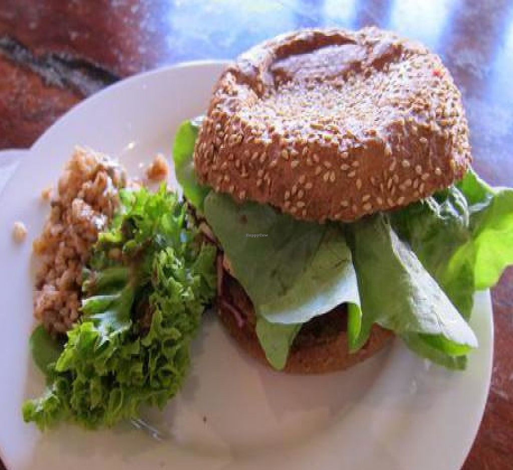 """Photo of Laurie's Vegetarian Take Away  by <a href=""""/members/profile/cvxmelody"""">cvxmelody</a> <br/>Soy burger <br/> September 25, 2011  - <a href='/contact/abuse/image/492/248806'>Report</a>"""