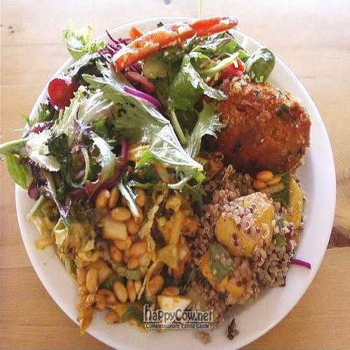 "Photo of Manna Wholefoods Cafe  by <a href=""/members/profile/cvxmelody"">cvxmelody</a> <br/>Salad & tofu pattie (vegan) <br/> March 8, 2010  - <a href='/contact/abuse/image/566/3956'>Report</a>"