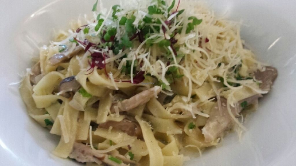 """Photo of The Warehouse Cafe  by <a href=""""/members/profile/Good%20for%20Vegans"""">Good for Vegans</a> <br/>Tagliatelle with mushrooms and vegan cream <br/> October 9, 2015  - <a href='/contact/abuse/image/640/120712'>Report</a>"""