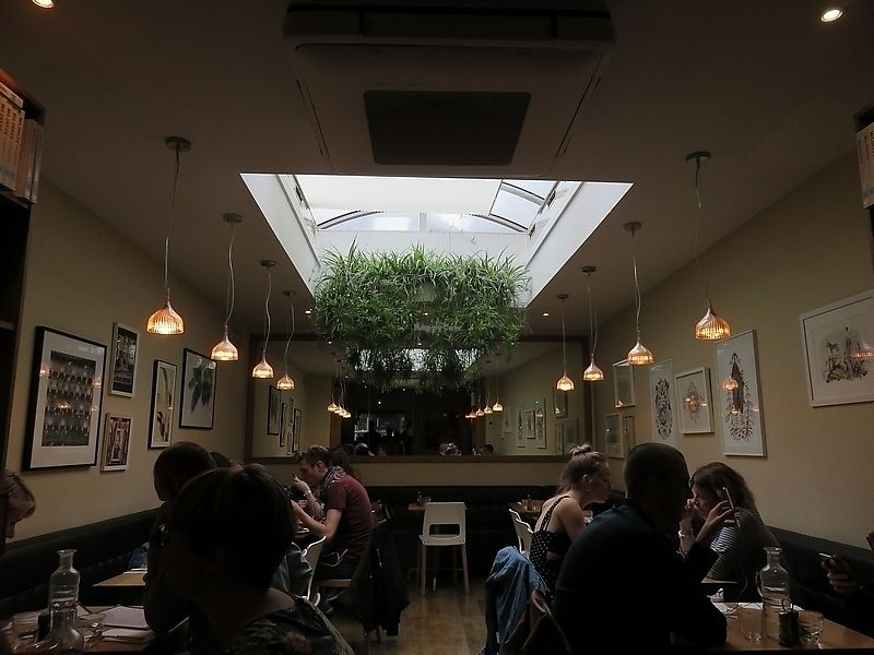 """Photo of Mildred's  by <a href=""""/members/profile/TrudiBruges"""">TrudiBruges</a> <br/>Mildred's interior, London <br/> November 16, 2017  - <a href='/contact/abuse/image/676/326158'>Report</a>"""
