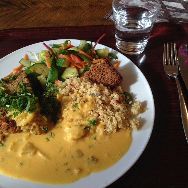 """Photo of Zucchini Vegetarian Cafe  by <a href=""""/members/profile/VaniaBriito"""">VaniaBriito</a> <br/>dish of the day :) chickpea loaf, veggie curry, quinoa and salad <br/> September 12, 2016  - <a href='/contact/abuse/image/846/175286'>Report</a>"""