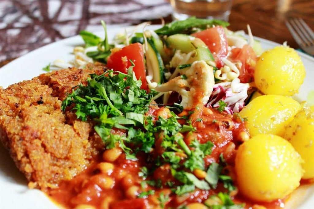 """Photo of Zucchini Vegetarian Cafe  by <a href=""""/members/profile/SueClesh"""">SueClesh</a> <br/>daily plate - sour cabbage and carrot patties <br/> April 8, 2015  - <a href='/contact/abuse/image/846/98244'>Report</a>"""