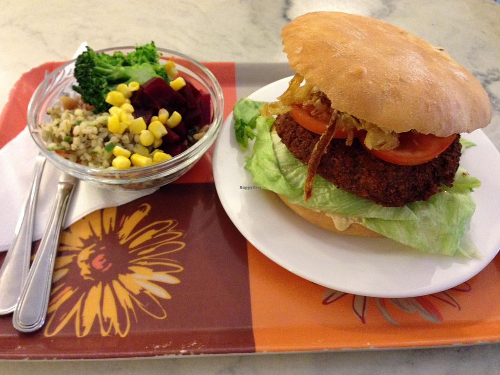 "Photo of CLOSED: Falafel  by <a href=""/members/profile/Pamina"">Pamina</a> <br/>Falafel burger and salad @ Falafel, Budapest <br/> April 19, 2015  - <a href='/contact/abuse/image/950/99518'>Report</a>"