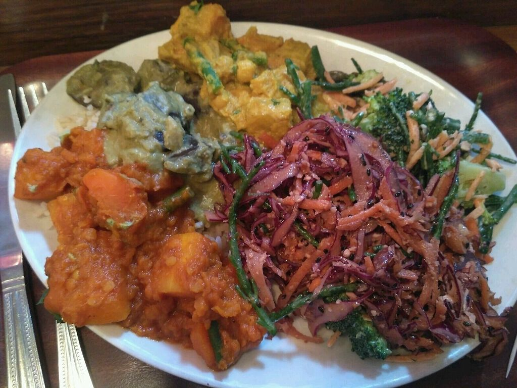 """Photo of Cornucopia Wholefoods  by <a href=""""/members/profile/barakco"""">barakco</a> <br/>don't choose, just mix it all! great atmosphere, good food!  <br/> March 13, 2018  - <a href='/contact/abuse/image/968/370200'>Report</a>"""