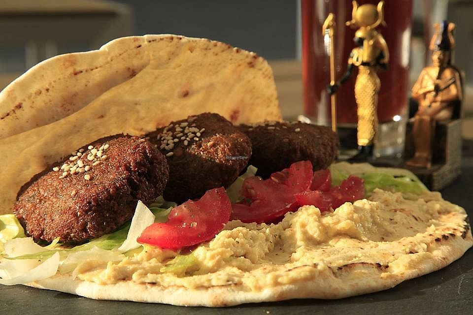 """Photo of Exodus  by <a href=""""/members/profile/community5"""">community5</a> <br/>Falafel with tahini <br/> September 6, 2017  - <a href='/contact/abuse/image/100064/301575'>Report</a>"""