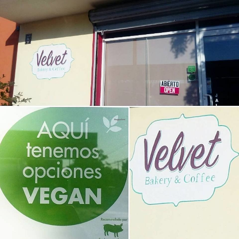 """Photo of Velvet Bakery & Coffee  by <a href=""""/members/profile/YanethGris"""">YanethGris</a> <br/>Vegan friendly Coffee Shop and Bakery highly recommended by The Humane league <br/> September 2, 2017  - <a href='/contact/abuse/image/100160/300218'>Report</a>"""