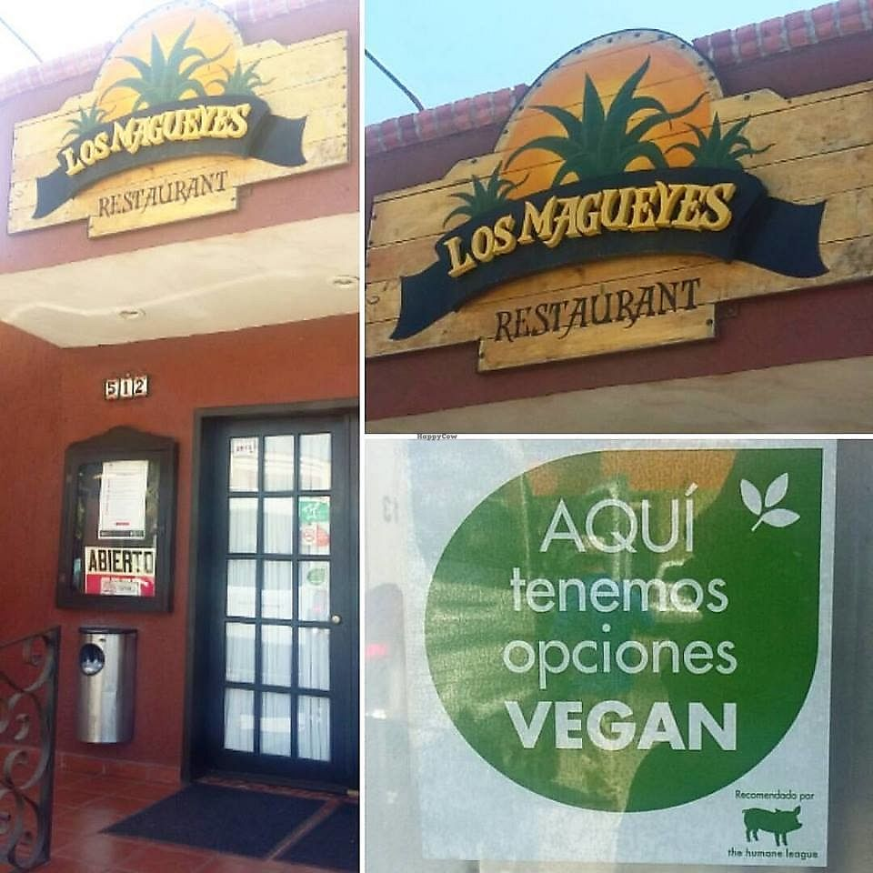 "Photo of Los Magueyes   by <a href=""/members/profile/YanethGris"">YanethGris</a> <br/>Los Magueyes is a vegan friendly restaurant recommended by The Humane League. They have one vegan option on their menu. They kindly veganize other dishes.  <br/> September 11, 2017  - <a href='/contact/abuse/image/100407/303370'>Report</a>"