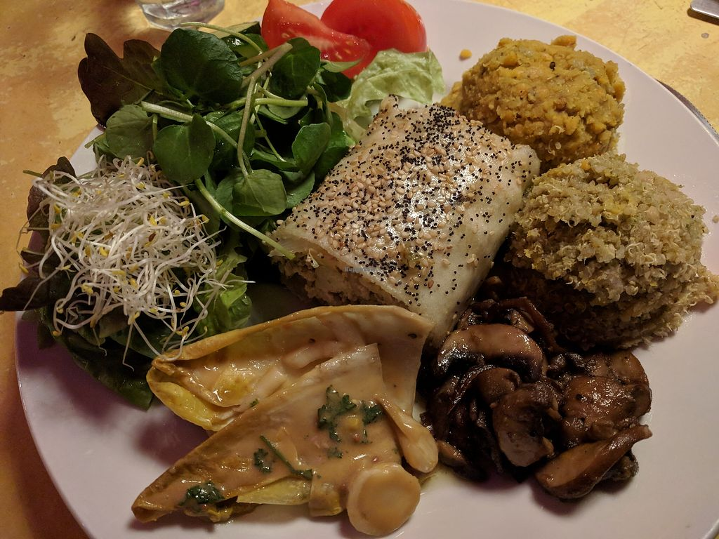 """Photo of Bolhoed  by <a href=""""/members/profile/steveveg"""">steveveg</a> <br/>Vegan Plate of the Day - including tofu-sesame strudel etc <br/> February 2, 2018  - <a href='/contact/abuse/image/1004/353927'>Report</a>"""