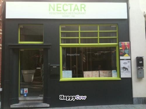 """Photo of Nectar  by <a href=""""/members/profile/HowardP"""">HowardP</a> <br/>Nectar Window <br/> September 28, 2013  - <a href='/contact/abuse/image/10066/55904'>Report</a>"""