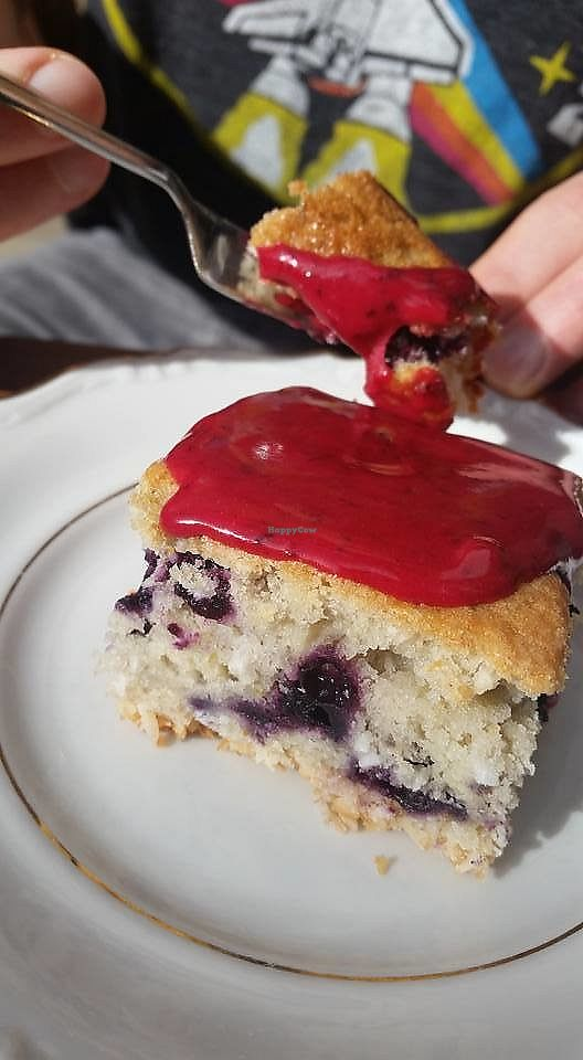 """Photo of Kaf  by <a href=""""/members/profile/community5"""">community5</a> <br/>Vegan coconut, lime and blueberry cake  <br/> September 12, 2017  - <a href='/contact/abuse/image/100674/303825'>Report</a>"""