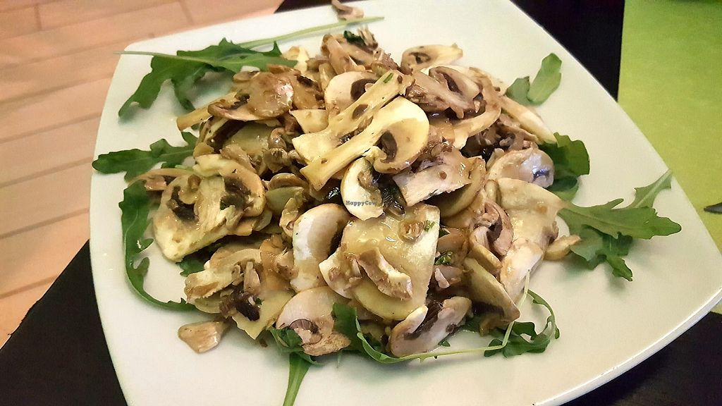 """Photo of Piperita  by <a href=""""/members/profile/spunkiVeg"""">spunkiVeg</a> <br/>Raw mushrooms (eaten on Dec 5, 2017) <br/> January 1, 2018  - <a href='/contact/abuse/image/100710/341797'>Report</a>"""