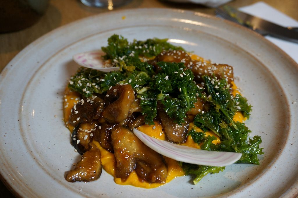 "Photo of Savvy  by <a href=""/members/profile/Ricardo"">Ricardo</a> <br/>Weekly Main Plate: Candied Shiitakés with carrot mousse and kale <br/> April 14, 2018  - <a href='/contact/abuse/image/100771/385876'>Report</a>"