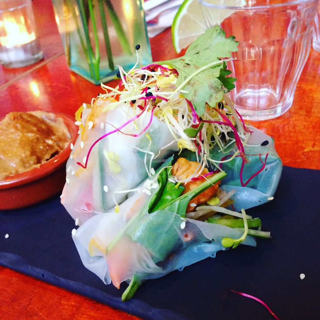 "Photo of Golden Temple  by <a href=""/members/profile/Peppermintcandys"">Peppermintcandys</a> <br/>RICE PAPER ROLLS.... yummy!  <br/> April 18, 2017  - <a href='/contact/abuse/image/1007/249618'>Report</a>"