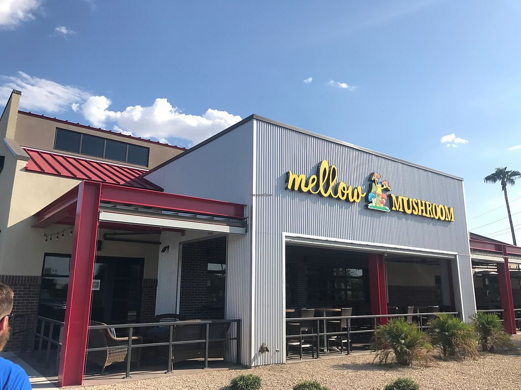 """Photo of Mellow Mushroom  by <a href=""""/members/profile/AmandaCox"""">AmandaCox</a> <br/>Mesa Location ? <br/> September 13, 2017  - <a href='/contact/abuse/image/100940/304084'>Report</a>"""