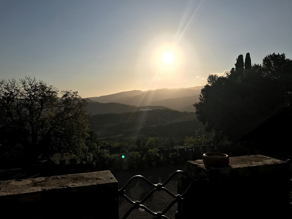 "Photo of Ristorante Castello di Valenzano  by <a href=""/members/profile/Vonna84"">Vonna84</a> <br/>View from the castle <br/> September 24, 2017  - <a href='/contact/abuse/image/100964/307876'>Report</a>"
