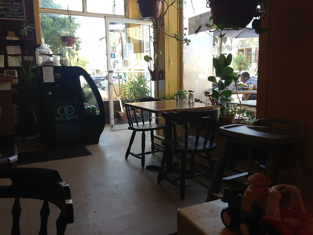 "Photo of Cafe Joe  by <a href=""/members/profile/Poppy29"">Poppy29</a> <br/>Inside café <br/> September 14, 2017  - <a href='/contact/abuse/image/100993/304364'>Report</a>"