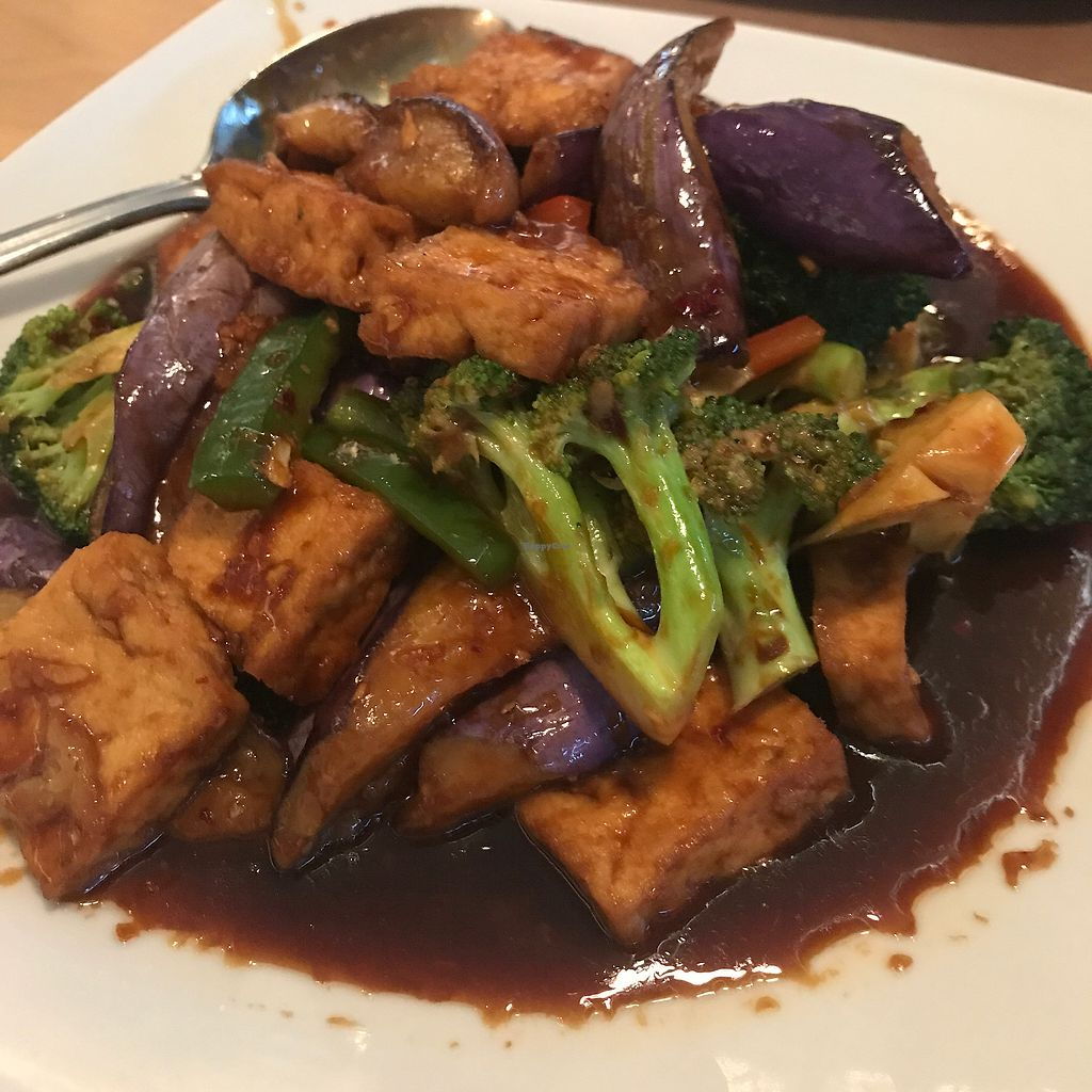 """Photo of Bamboo  by <a href=""""/members/profile/Sarah%20P"""">Sarah P</a> <br/>Tofu broccoli eggplant <br/> October 21, 2017  - <a href='/contact/abuse/image/101000/317233'>Report</a>"""
