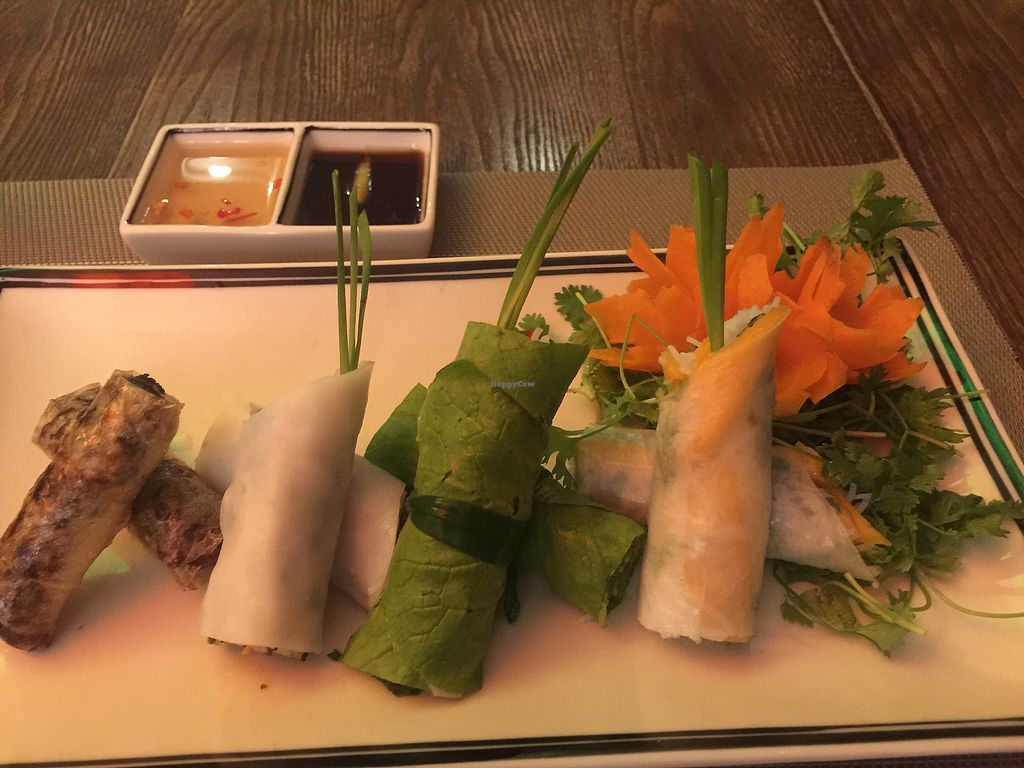 """Photo of Swans Gone Raw  by <a href=""""/members/profile/Egil"""">Egil</a> <br/>Four seasons spring rolls <br/> September 16, 2017  - <a href='/contact/abuse/image/101054/305007'>Report</a>"""
