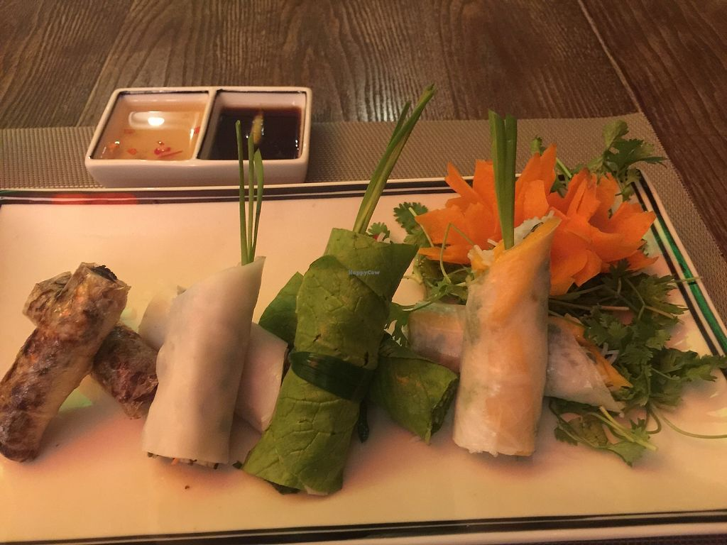 """Photo of Swans Gone Raw  by <a href=""""/members/profile/Egil"""">Egil</a> <br/>Four Seasins spring rolls  <br/> September 16, 2017  - <a href='/contact/abuse/image/101054/305022'>Report</a>"""