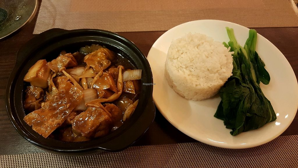 """Photo of Swans Gone Raw  by <a href=""""/members/profile/ThomasAppleyard"""">ThomasAppleyard</a> <br/>Tofu hot pot <br/> October 8, 2017  - <a href='/contact/abuse/image/101054/313166'>Report</a>"""