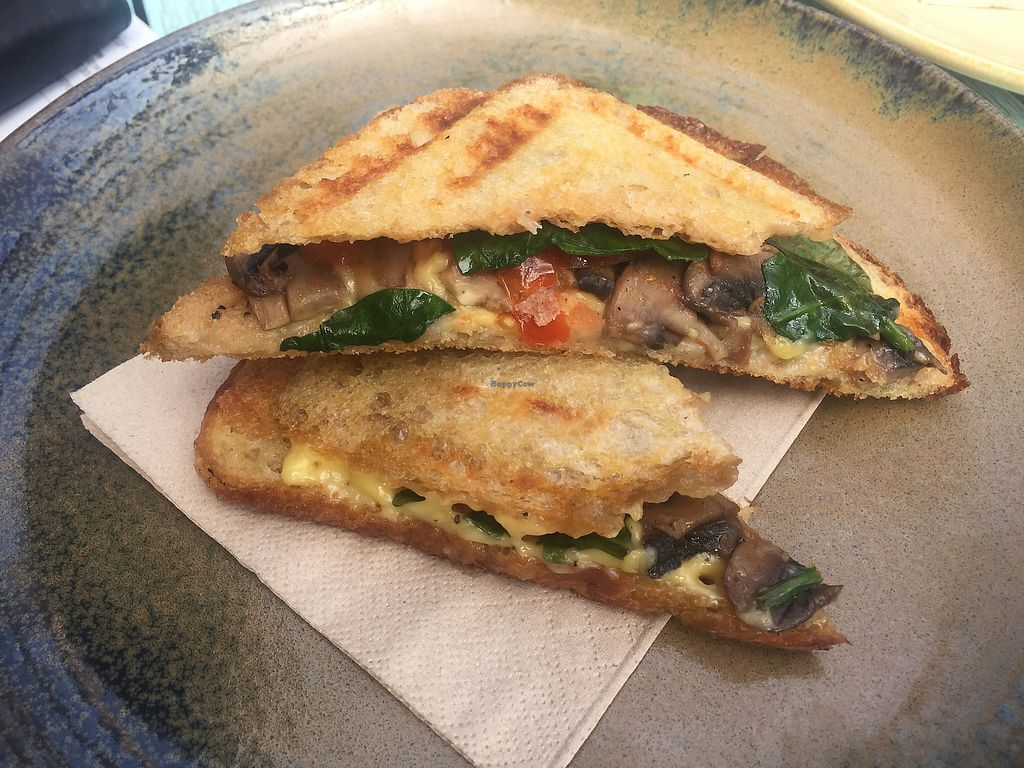 """Photo of Native Home House of Plants  by <a href=""""/members/profile/Tiggy"""">Tiggy</a> <br/>Mushroom, tomato, spinach and vegan cheese jaffle <br/> September 18, 2017  - <a href='/contact/abuse/image/101136/305550'>Report</a>"""