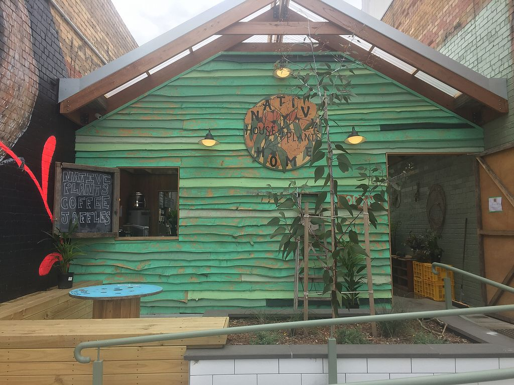 """Photo of Native Home House of Plants  by <a href=""""/members/profile/Tiggy"""">Tiggy</a> <br/>Shop front <br/> October 2, 2017  - <a href='/contact/abuse/image/101136/310882'>Report</a>"""