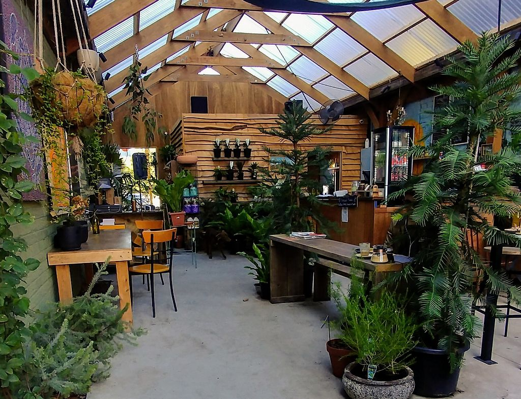 """Photo of Native Home House of Plants  by <a href=""""/members/profile/karlaess"""">karlaess</a> <br/>Interior <br/> April 7, 2018  - <a href='/contact/abuse/image/101136/381880'>Report</a>"""