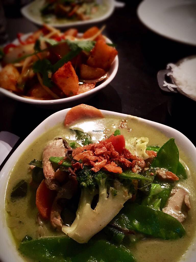 """Photo of Khao Asian Street Food  by <a href=""""/members/profile/mK_vegan"""">mK_vegan</a> <br/>Green Vegetable Curry <br/> April 21, 2018  - <a href='/contact/abuse/image/101176/388904'>Report</a>"""