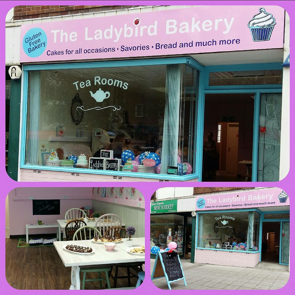 """Photo of The Lady Bird Bakery  by <a href=""""/members/profile/VickyMillward"""">VickyMillward</a> <br/>  <br/> September 22, 2017  - <a href='/contact/abuse/image/101448/307173'>Report</a>"""