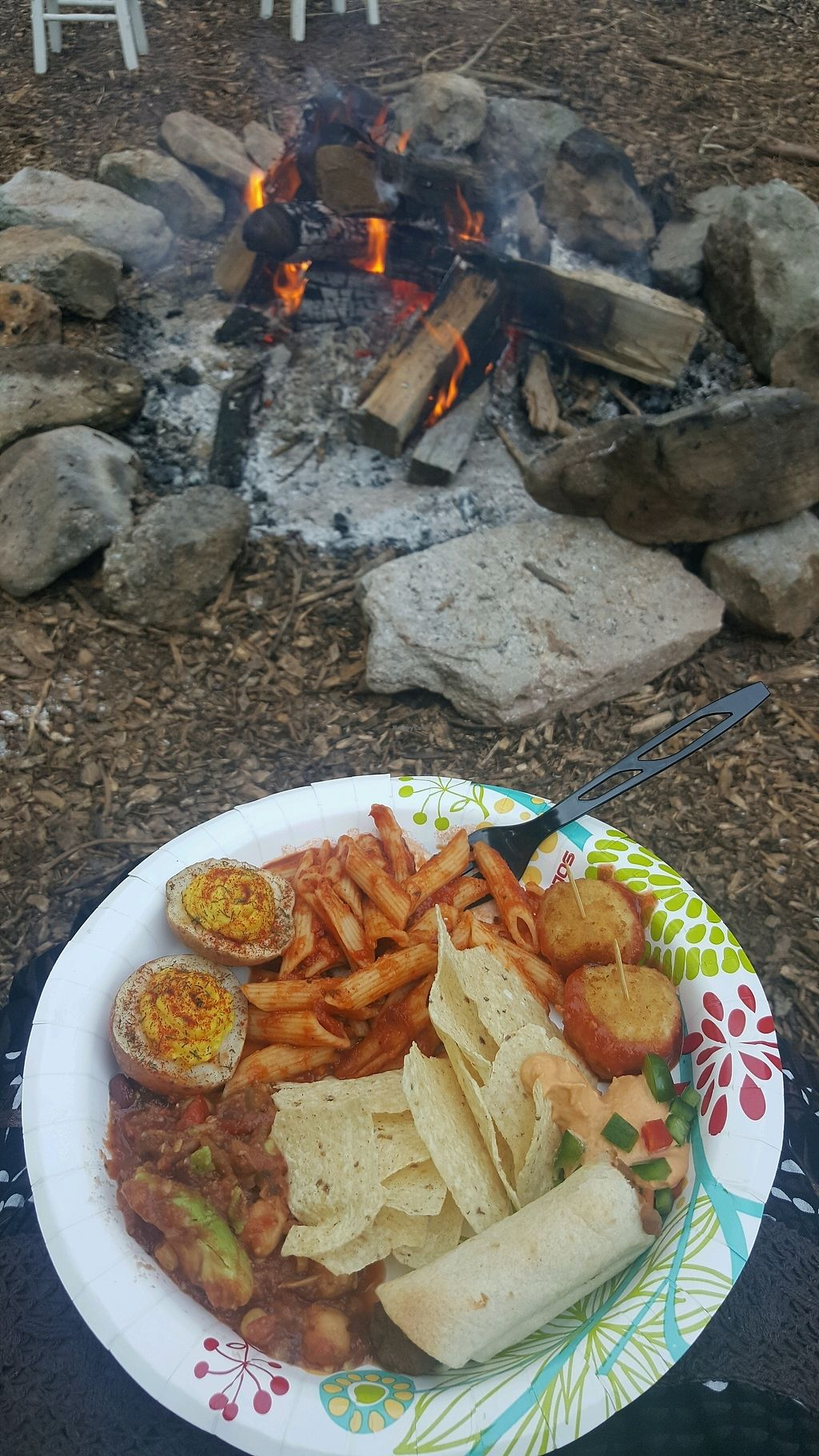 "Photo of Vahimsa  by <a href=""/members/profile/beccajane"">beccajane</a> <br/>vegan dinner and fire <br/> September 22, 2017  - <a href='/contact/abuse/image/101491/307280'>Report</a>"