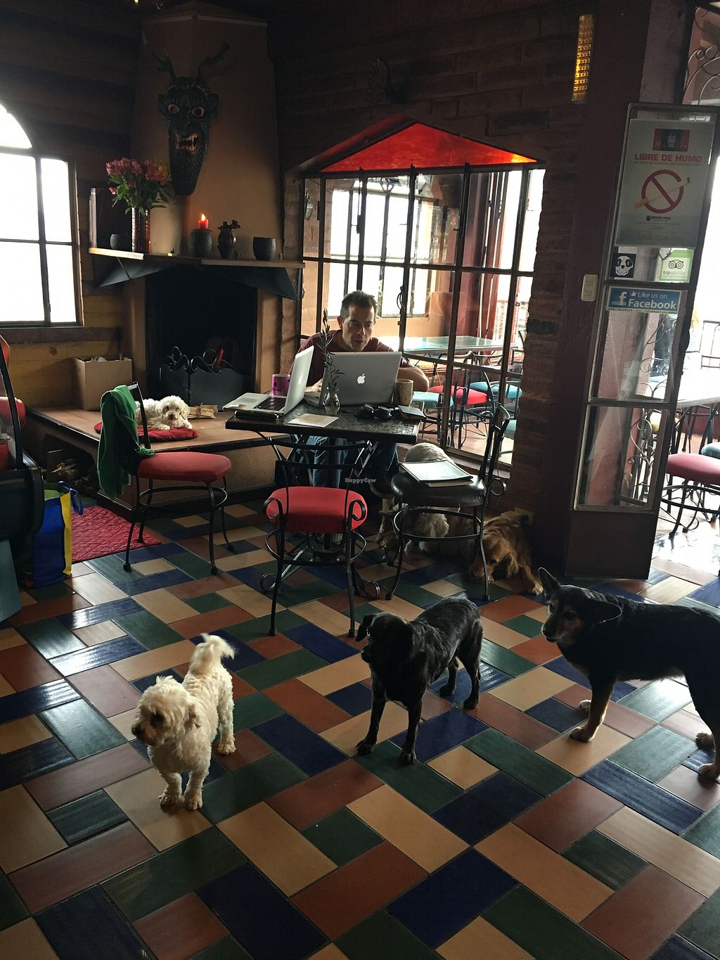 """Photo of Cafe Mosaico  by <a href=""""/members/profile/DianaGodoy"""">DianaGodoy</a> <br/>cafe Mosaico is Petfriendly! <br/> September 25, 2017  - <a href='/contact/abuse/image/101578/308087'>Report</a>"""