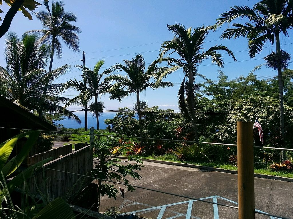 """Photo of The South Kona Fruit Stand  by <a href=""""/members/profile/alexandra_vegan"""">alexandra_vegan</a> <br/>the view <br/> September 27, 2017  - <a href='/contact/abuse/image/101790/308938'>Report</a>"""