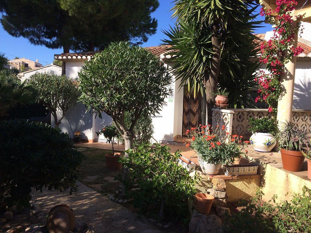 "Photo of Casa Blanca  by <a href=""/members/profile/bazilisadog"">bazilisadog</a> <br/>Private garden <br/> November 26, 2017  - <a href='/contact/abuse/image/101791/329366'>Report</a>"
