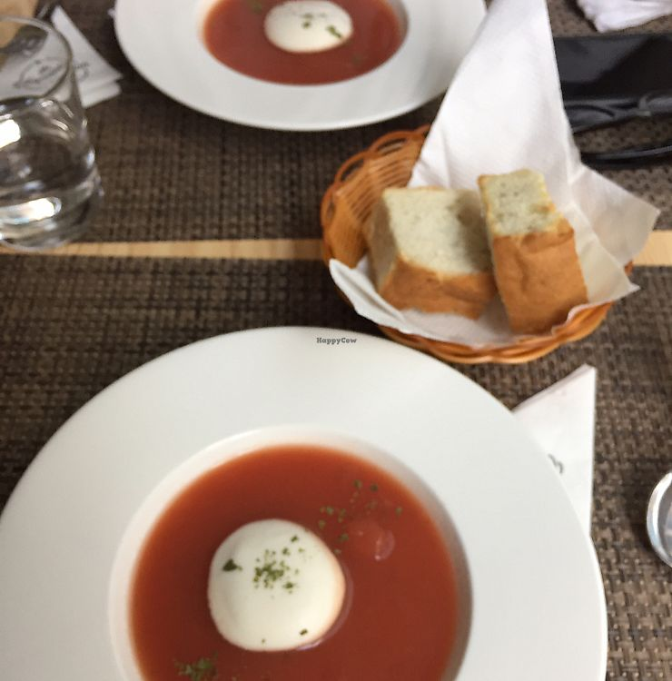 """Photo of The Vegvolution Kitchen  by <a href=""""/members/profile/Ashni"""">Ashni</a> <br/>beetroot soup with soymilk cream <br/> December 10, 2017  - <a href='/contact/abuse/image/101803/334375'>Report</a>"""