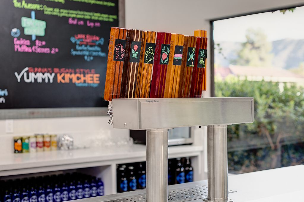 """Photo of Revel - Kombucha Bar  by <a href=""""/members/profile/stokes32"""">stokes32</a> <br/>Jun Kombucha on Tap <br/> September 29, 2017  - <a href='/contact/abuse/image/101883/309811'>Report</a>"""