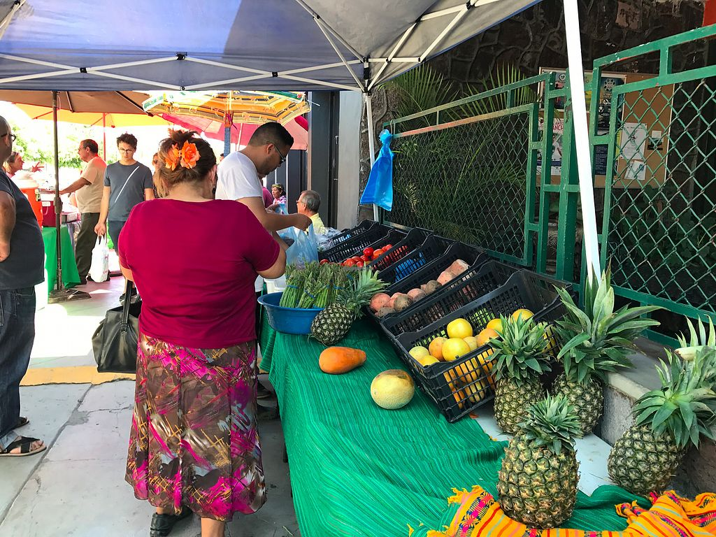 "Photo of Mercado Organico  by <a href=""/members/profile/YanethGris"">YanethGris</a> <br/>Organic fruit stand <br/> November 1, 2017  - <a href='/contact/abuse/image/101949/320690'>Report</a>"