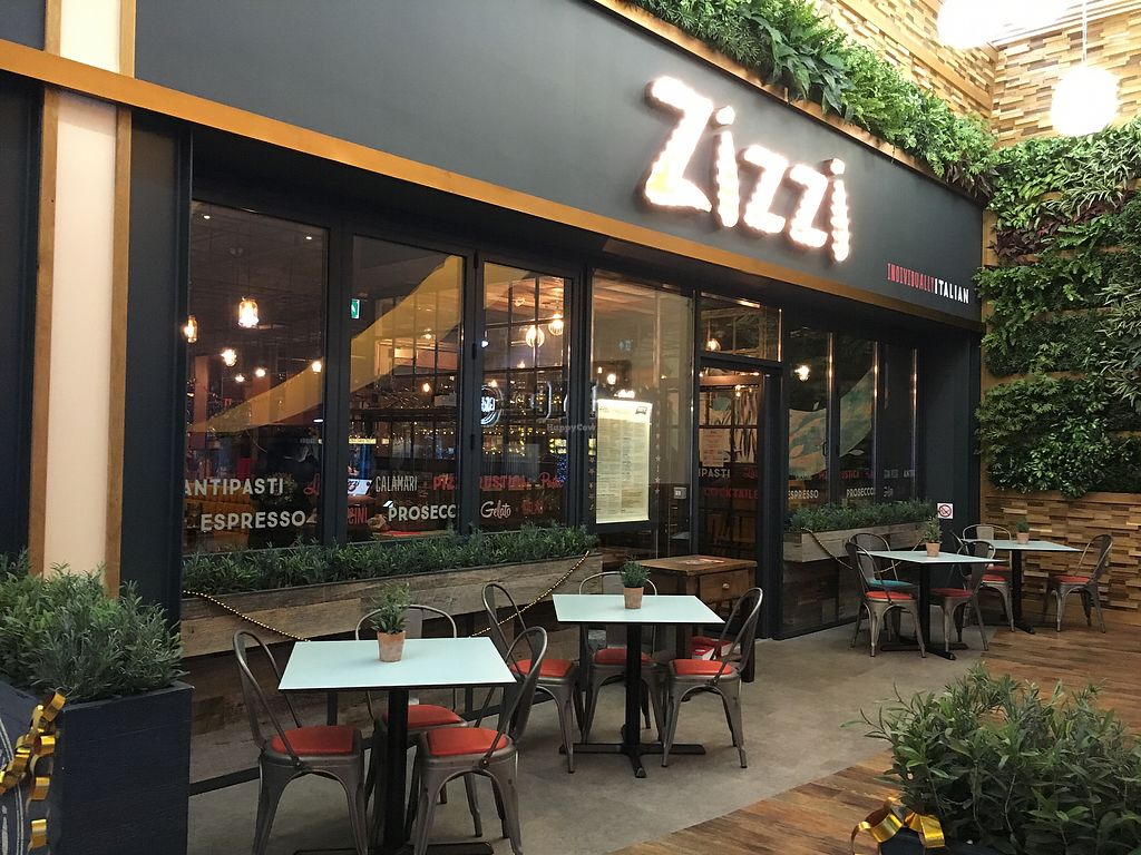 "Photo of Zizzi  by <a href=""/members/profile/hack_man"">hack_man</a> <br/>Outside  <br/> November 17, 2017  - <a href='/contact/abuse/image/102072/326494'>Report</a>"