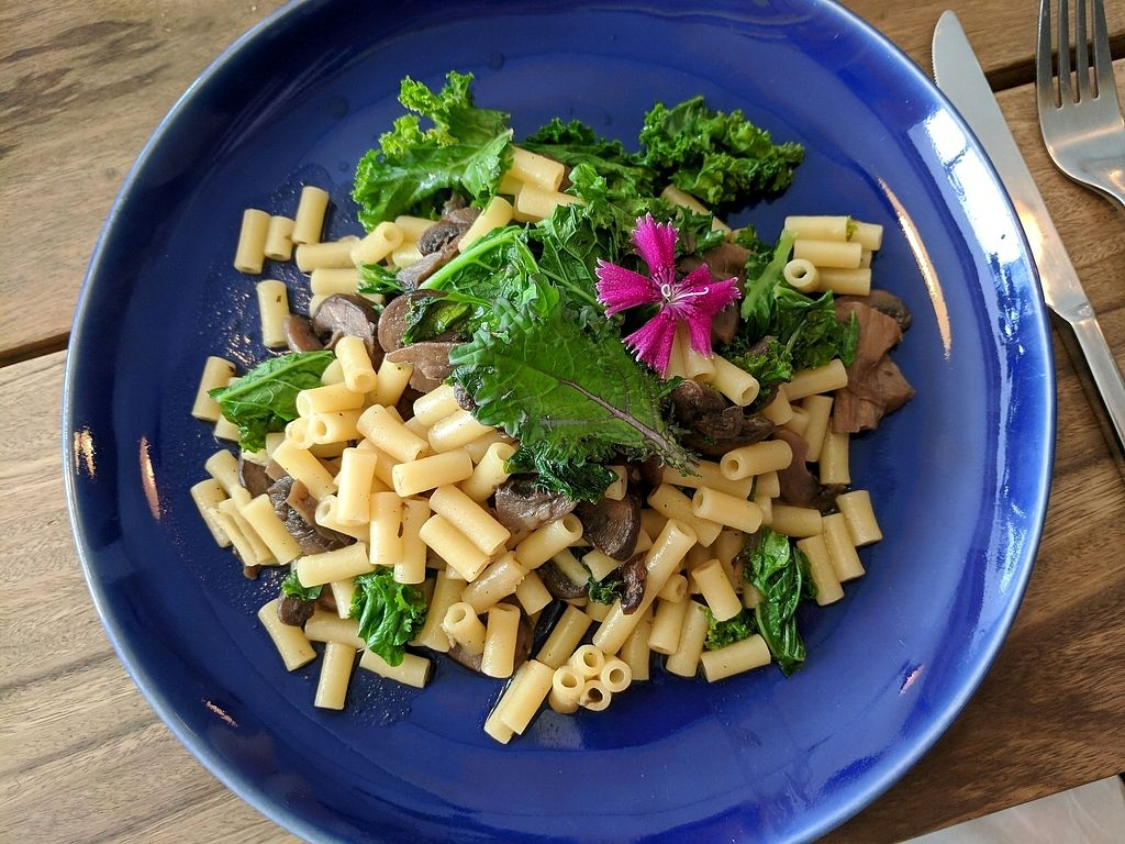 """Photo of El Mercadito Biologico  by <a href=""""/members/profile/AthenaSimpson"""">AthenaSimpson</a> <br/>kale and mushroom gluten free pasta <br/> January 13, 2018  - <a href='/contact/abuse/image/102249/346211'>Report</a>"""